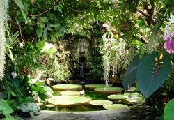 Остров Искья - ботанический сад