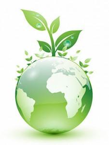 Новая стратегия туризма основана на разумном использовании природных ресурсов